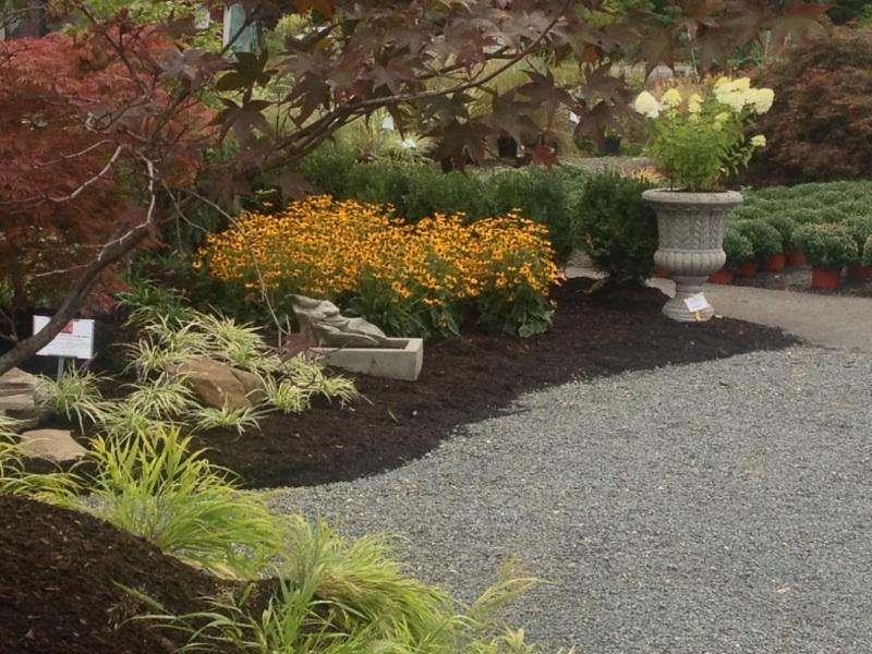 Fall Gardening at DTE
