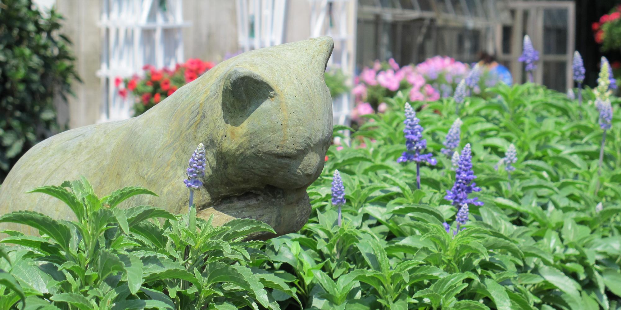 Serene Cat Statuary