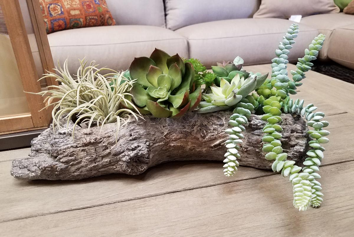Gorgeous Succulent Centerpiece