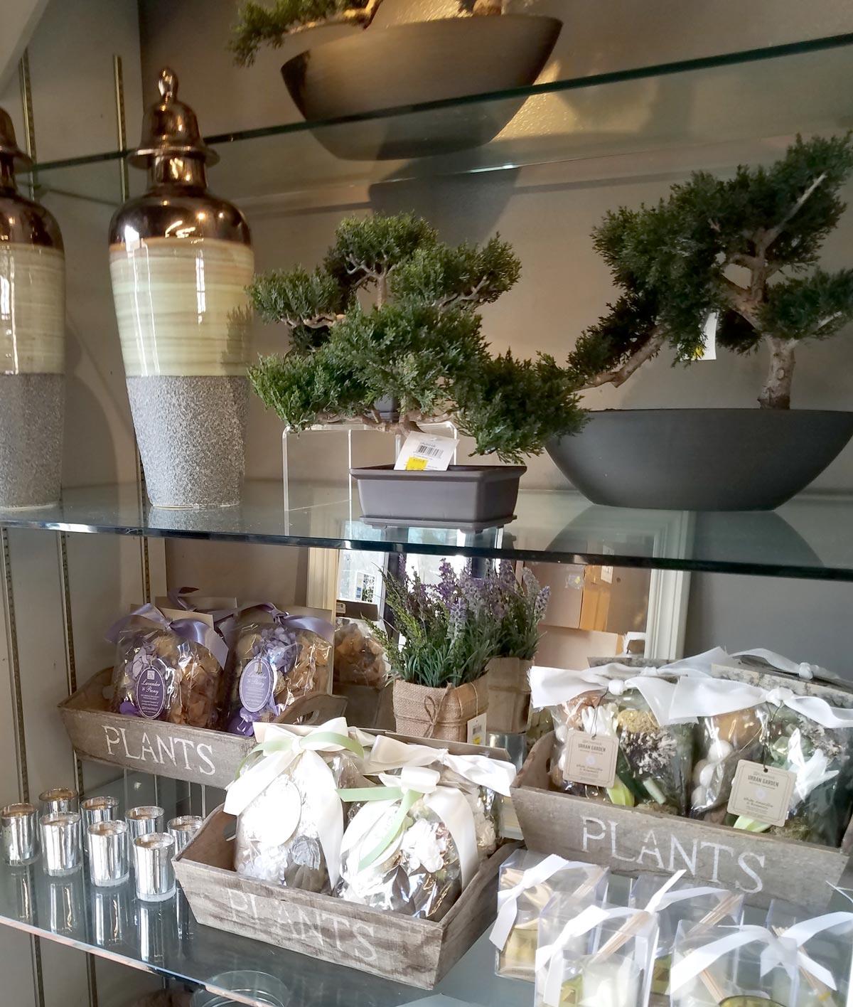 Tabletop Bonsai and Potpourri
