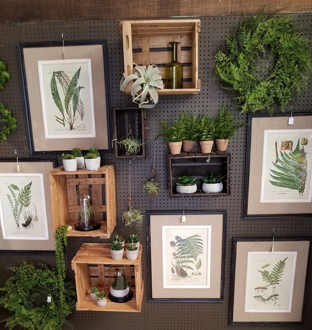 Prints and Plants and More!