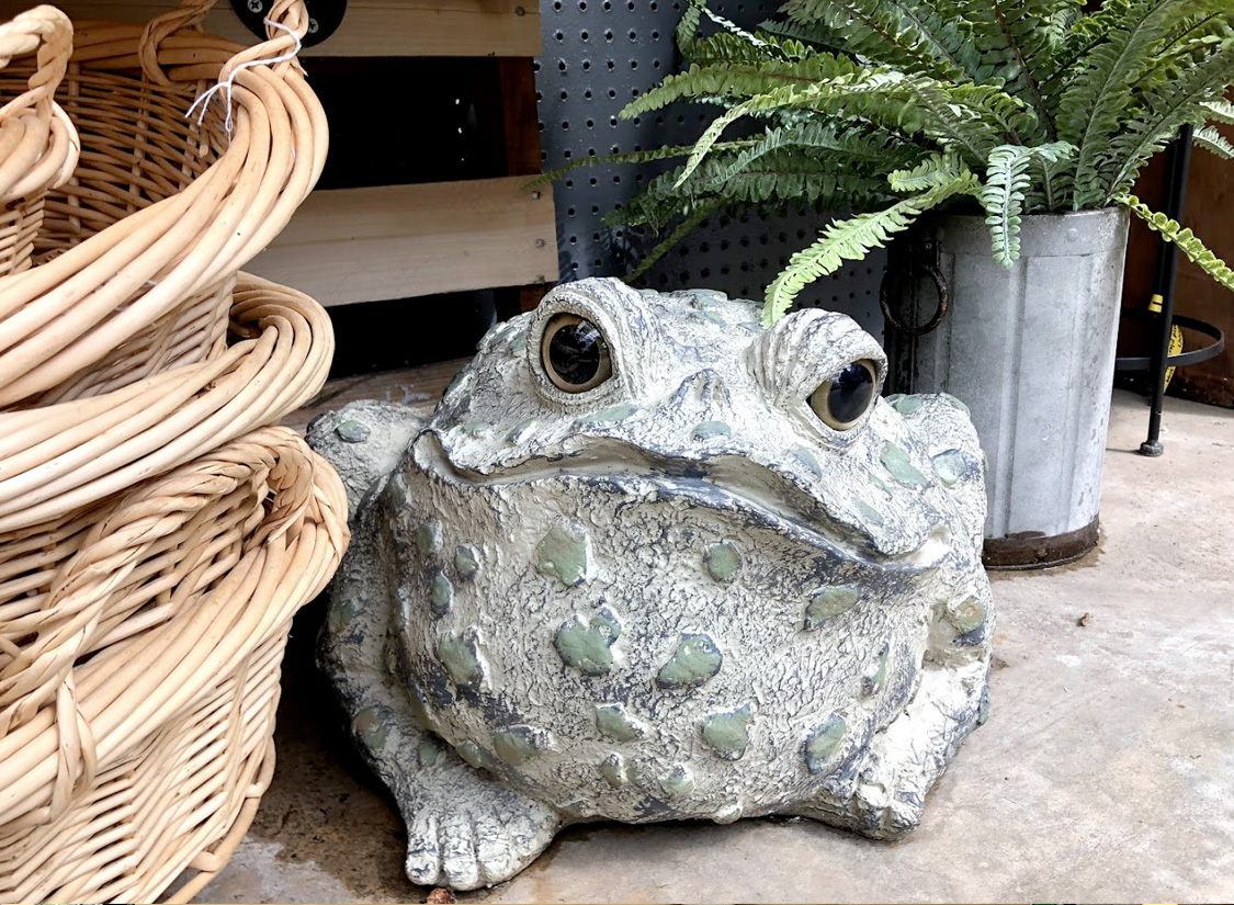 Decorative Stone Frog, Baskets and Ferns