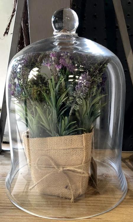 Vitrine with Herb Garden