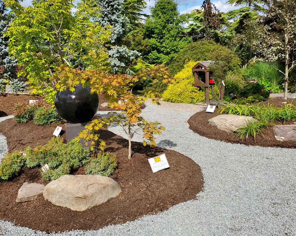 The Japanese Maple Garden at DTE Living!