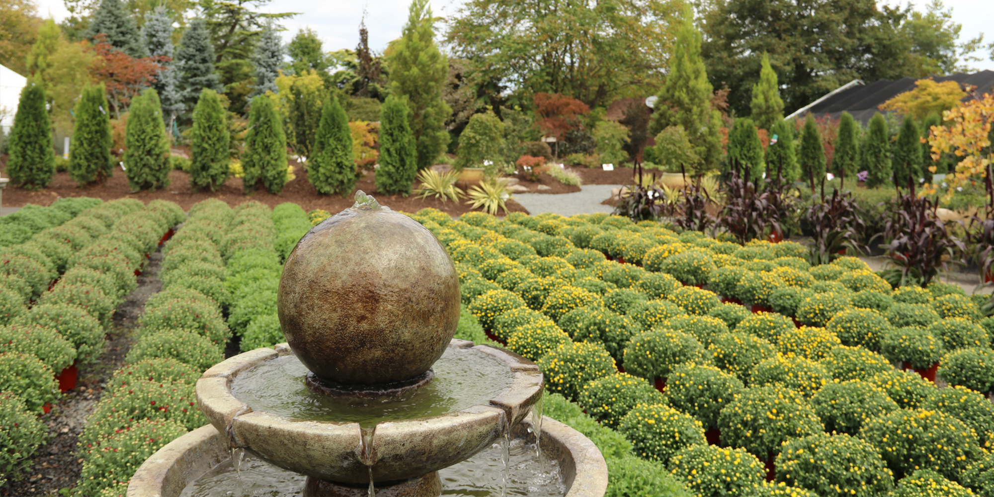 Fountain and Fall Shrubbery