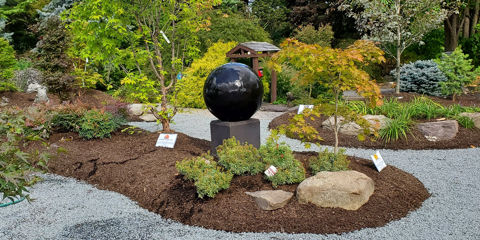 The Japanese Maple Garden at DTE