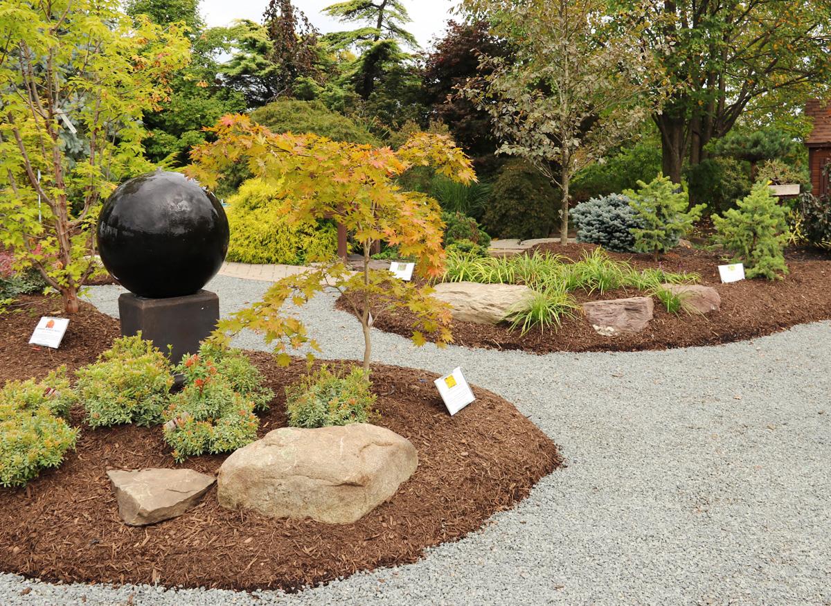 Japanese Maples Garden