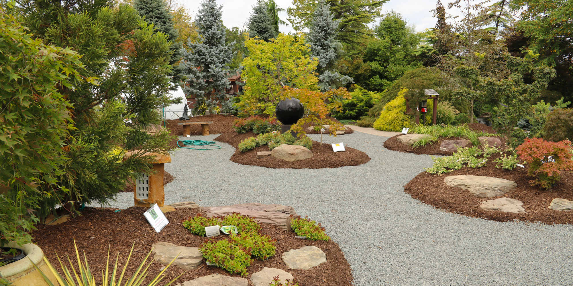 The Japanese Maple Garden at Down to Earth