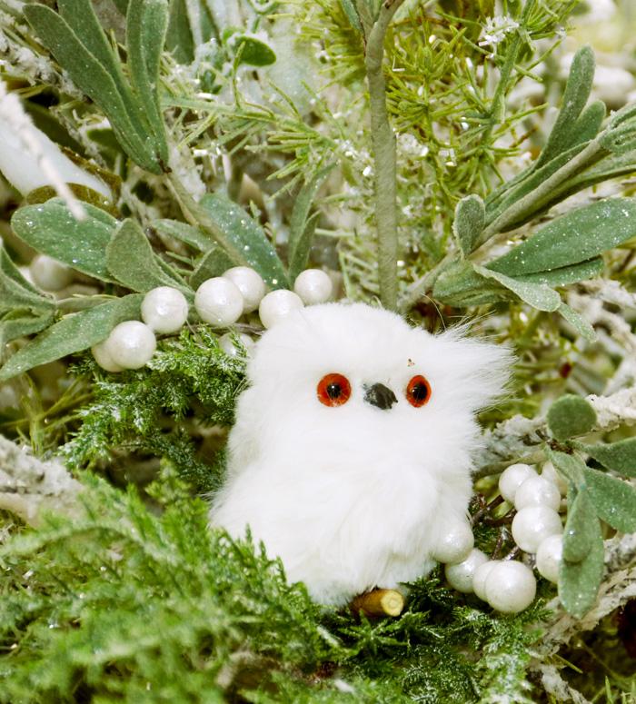 Cute Owl Collectible