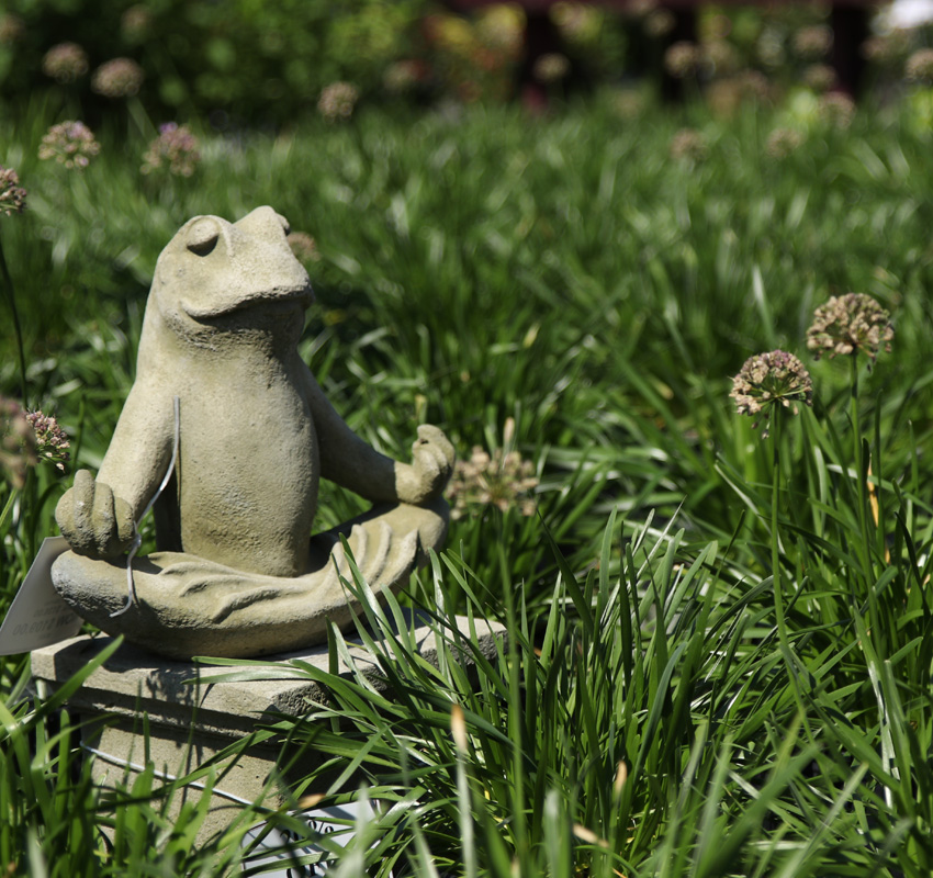 Meditating Frog Statue from our Garden Center