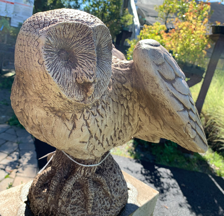 Owl Statuary from Rockland's Largest Garden Center